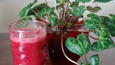 Recipe: Appetizing Body detox smoothie_5f76f74fb50e9.jpeg